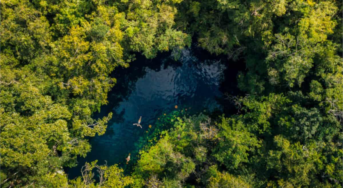 Reserva Toh puerto morelos cenote