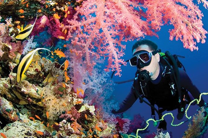 What to do in Puerto Morelos Reef Park