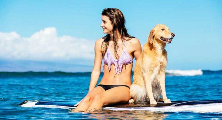 Atelier Playa Mujeres-All Inclusive Resort - pet-friendly