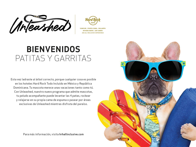 Hard Rock Hotel Cancun - dog friendly resorts