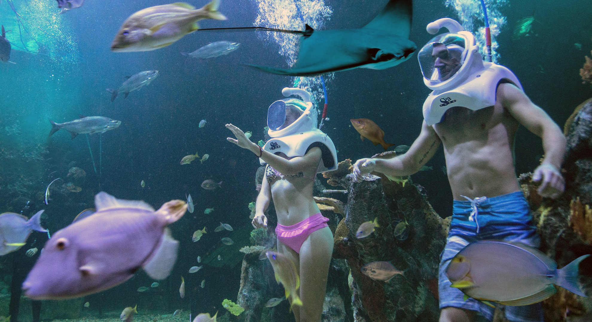 Interactive Aquarium - family things to do in cancun