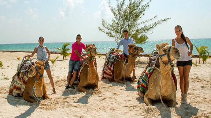 Safari - family excursions in cancun