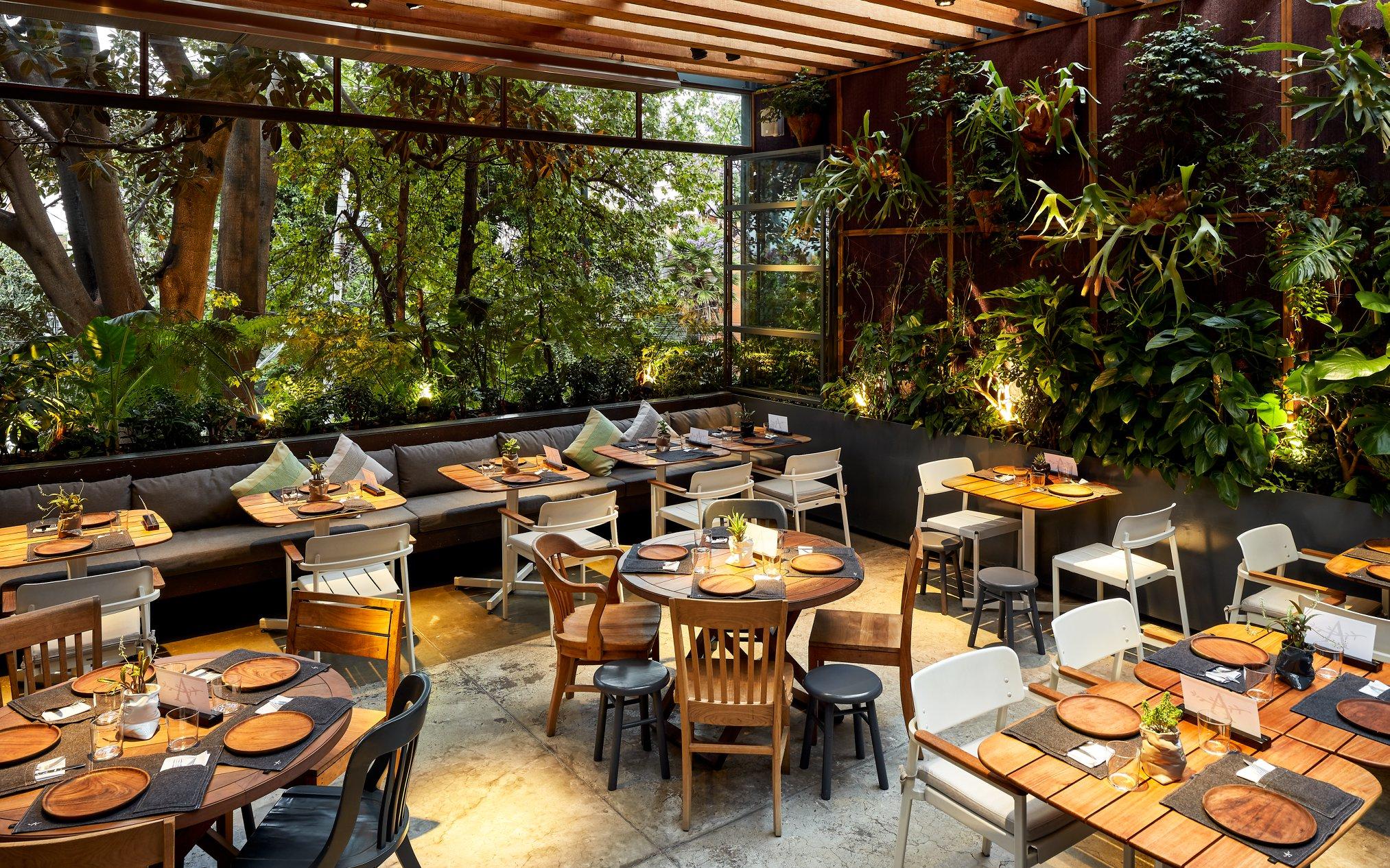 Best Restaurants CDMX