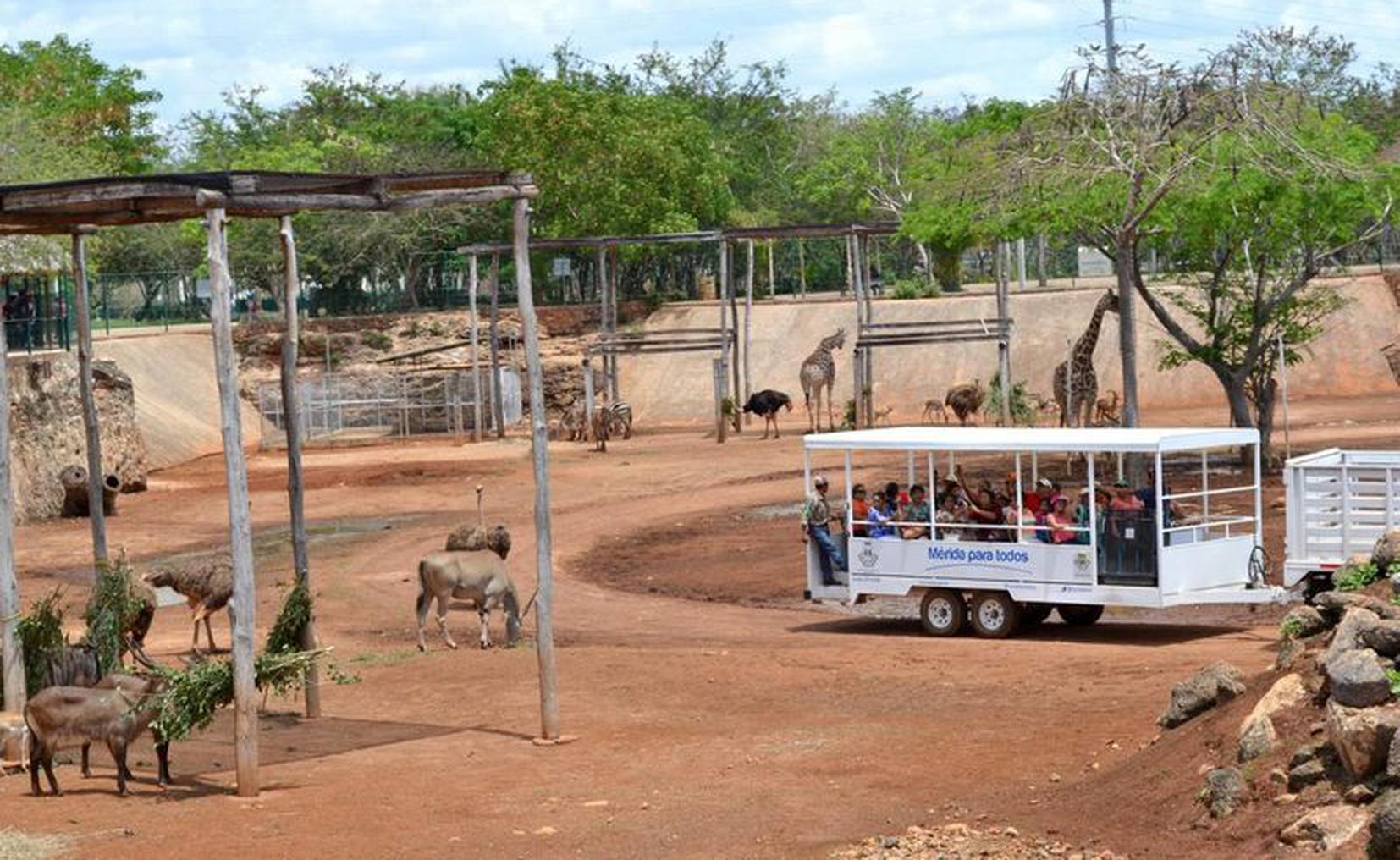 Animaya Zoo