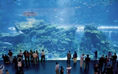 Veracruz Aquarium - mexico famous place